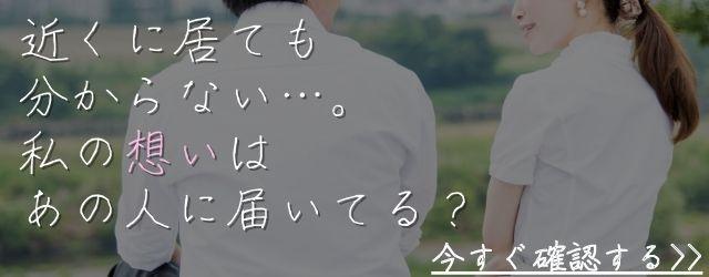 Sui love160010