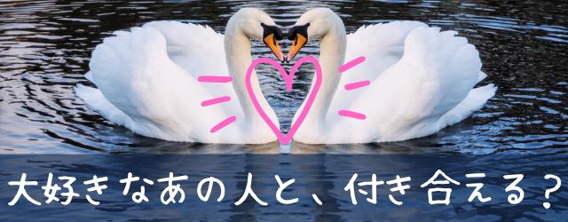 Sui love16009