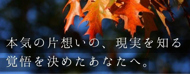 Sui love2760